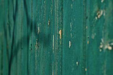 Grüne Fassade von Agnes Meijer