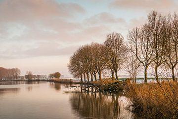 Klein meer met kale bomen aan de waterkant van Ruud Morijn