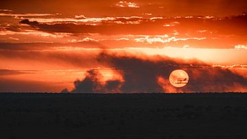 Zonsondergang in Kenia van Andy Troy