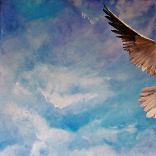 Absolute Freedom van Stephanie Köhl