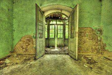 Open door  von Liliane Eliaerts