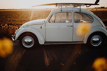 VW Kever 1964 van Martina Ketelaar