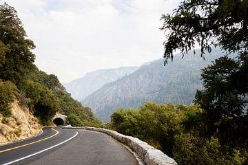 Roadtrip USA Yosemite von Ingeborg van Bruggen
