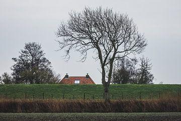 Dak boven de dijk bij Pieterburen van Paul van Putten