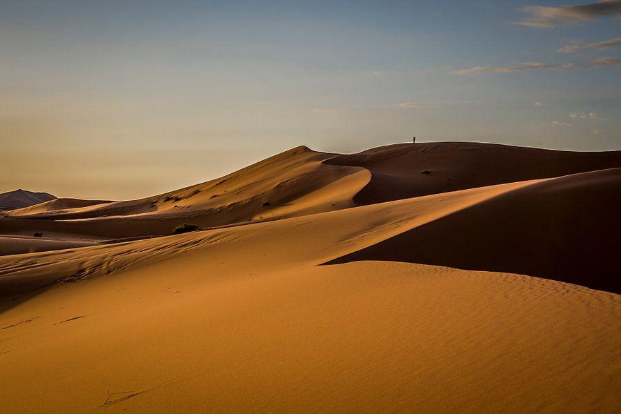 Ochtendzon in de woestijn van Peter Vruggink