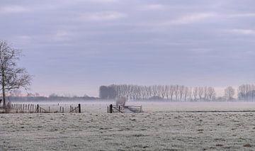 koud platteland van Tania Perneel