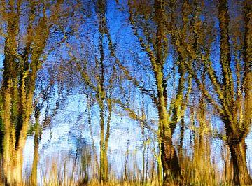 Tree Magic 79 van MoArt (Maurice Heuts)