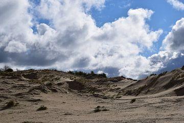 Zanderige duinen von Amber van den Broek