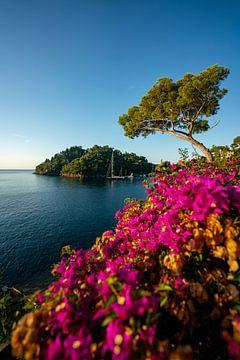 Bloemrijke kust in Portofino van Leo Schindzielorz