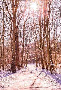 Winter Sneeuw 2021 Kralingse Plas Rotterdam van Deborah de Meijer