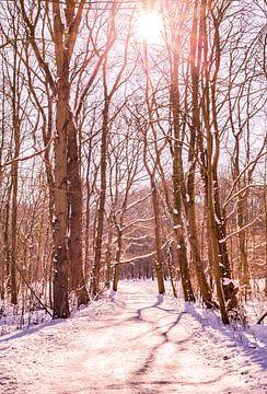 Winter Schnee 2021 Kralingse Plas Rotterdam von Deborah de Meijer