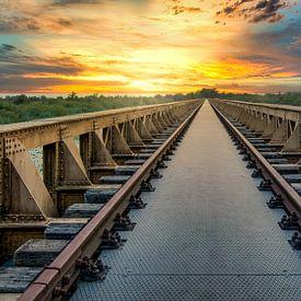 De bridge leads everywhere van John van den Heuvel