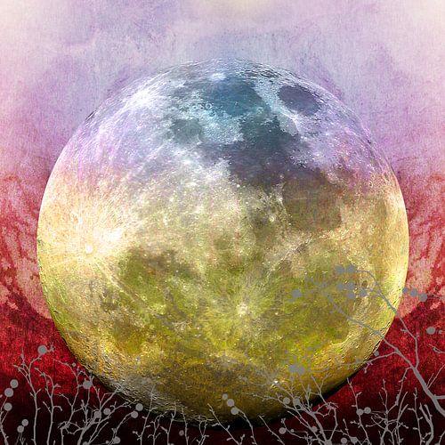 MOON under MAGIC SKY III-1 van Pia Schneider
