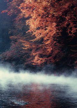 Herbst am Fluss von Dirk Wüstenhagen