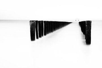 Paalhoofd  zwart wit van Ingrid Van Damme fotografie