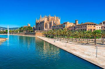 Kathedraal La Seu en Parc de la Mar in Palma de Majorca, Spanje van Alex Winter