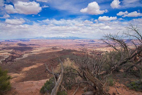Nationaal Park Canyonlands- Islands in the Sky in Utah - Verenigde Staten