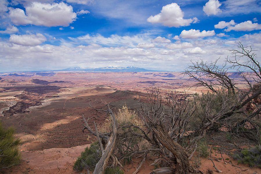 Nationaal Park Canyonlands- Islands in the Sky in Utah - Verenigde Staten van VanEis Fotografie