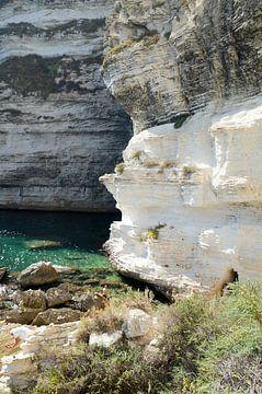 Krijtrotsen in Bonifacio, Corsica van Kees van Dun