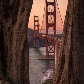 Golden Gate bridge(!) van Reinier Snijders