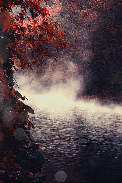 Mist over de rivier van Dirk Wüstenhagen