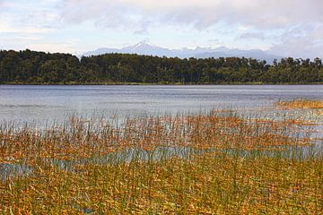 Mahinapua Lake / Nieuw - Zeeland van Shot it fotografie