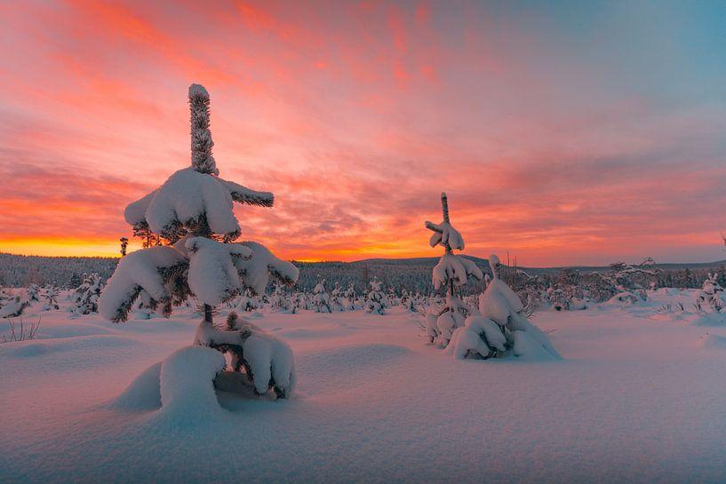 Zweden zonsondergang in winter 3 van Andy Troy