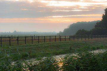 zonsopkomst over het land van Tania Perneel