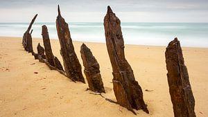 Trinculo Shipwreck