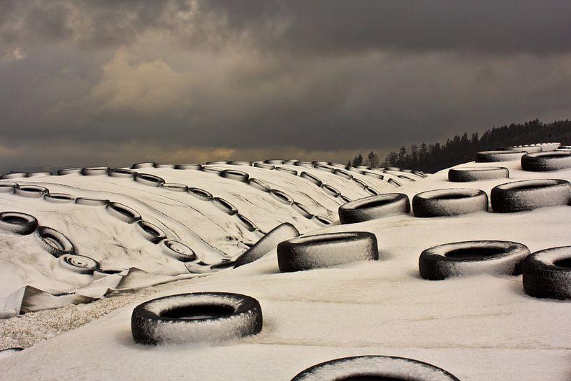 winterlandschap van Caroline van Sambeeck
