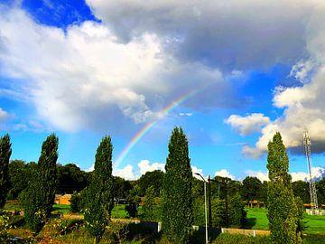 Regenboog in een landschap van Wessel Luiting