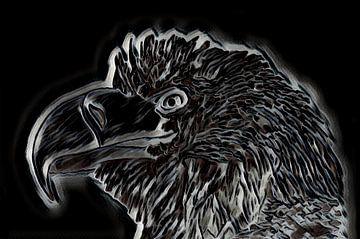 Adler Zeichnung. von Jose Lok