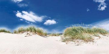 Panorama Dünenlandschaft am Strand an der Ostsee von Fine Art Fotografie