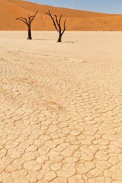 Dead Vlei in Namibië, Afrika van Simone Janssen