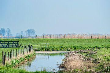 Nederland waterland van Anouschka Hendriks
