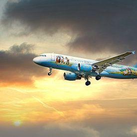 Vliegtuig Brussels Airlines Bruegel van Angélique Vanhauwaert
