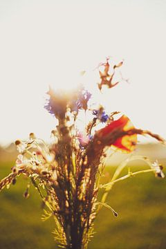 Bos Bloemen van Melanie Schat