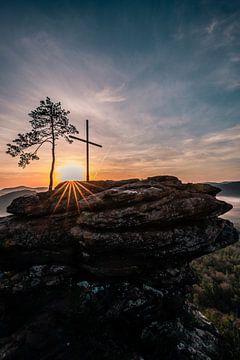 Zonnester tussen boomrots en bergtopkruis van Fotos by Jan Wehnert