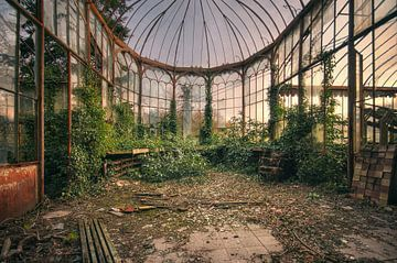 Urbex - verlassenes Gewächshaus (Glashaus)