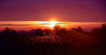 Zonsondergang op de Beningerslikken von Sven Zoeteman