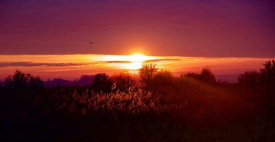 Zonsondergang op de Beningerslikken