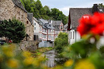 Monreal, Eifel. von Johannes Grandmontagne
