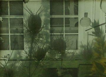 Laboratorium. von Marianne de Wit-Koenen