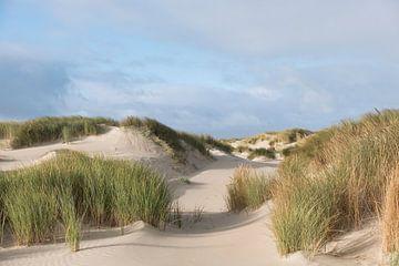 texel duinen von Nienke Stegeman