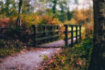 Autumnmood | Hof Espelo (5) von Rob van der Pijll