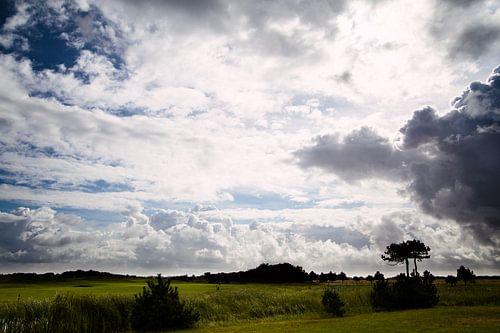 Ameland landschap van