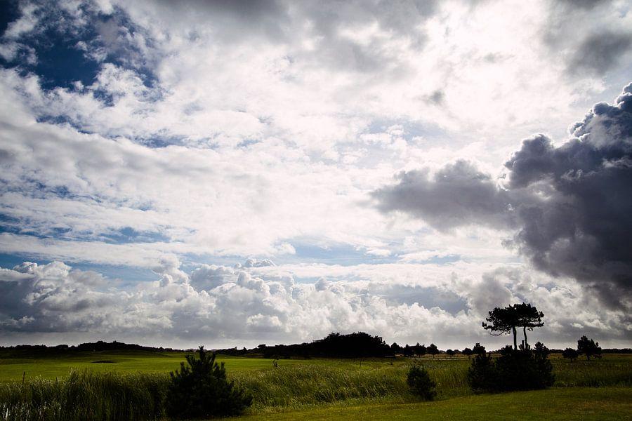 Ameland landschap van Nico van der Vorm