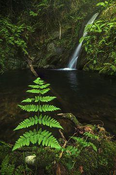Cascade des Asturies Cascada Gorgollon sur Jean Claude Castor