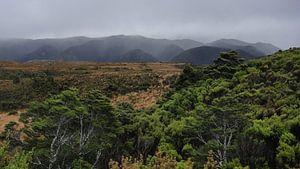 Nieuw Zeeland - Heaphy Track van