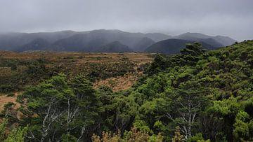 Nieuw Zeeland - Heaphy Track van Maurice Weststrate